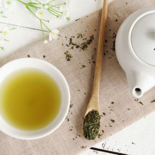 sala del tè carnia